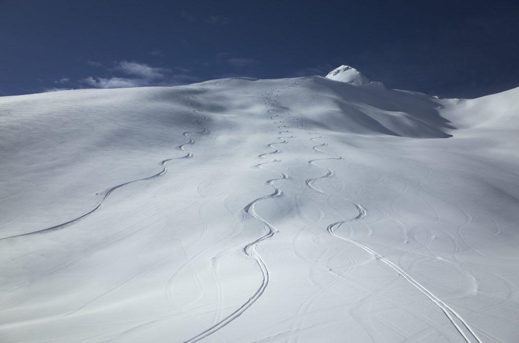 parallel ski