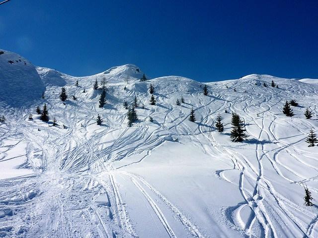 bluebird ski days