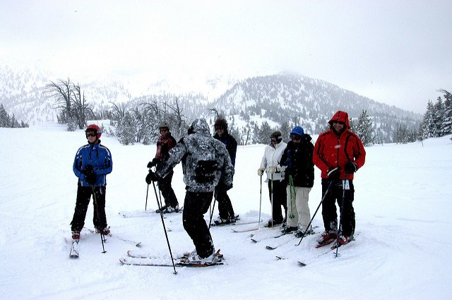 skiers in the snow