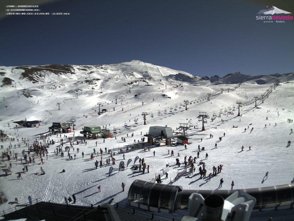 borreguiles sierra nevada webcam