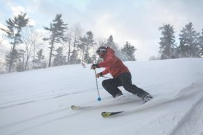 Rental Skis: What Level Ski is For Me?