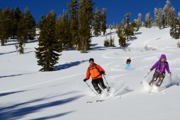 How To Ski Powder – Practical Tips for Beginners