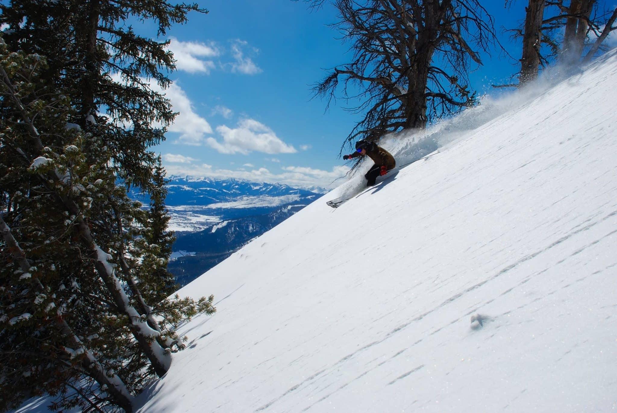 tree skiing glades