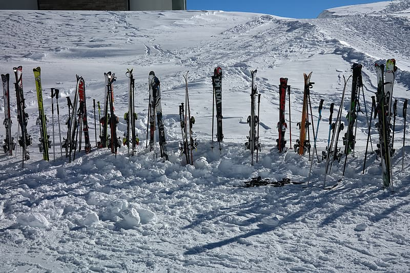 ski in snow